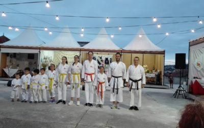 HCM esteve presente em demonstração de karate na Pampiarte