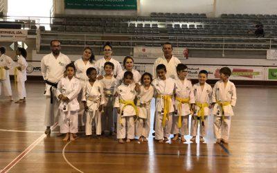 HCM recebeu Estágio de Formação de Karate